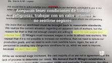 Escasez de tortillas destapa escándolo en 'El Milagro'