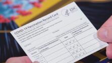 Así puedes descargar una copia digital de tu tarjeta de vacunación