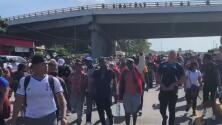 Experta asegura que recibir a todos los inmigrantes que vienen en caravana provocaría problemas sociales en el país