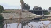 """""""Estamos enojados"""": declaran estado de emergencia en Carson por mal olor que sigue emanando del canal Domínguez"""