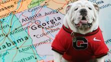 Atlanta es una de las ciudades más amigables para los perros en EEUU