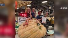 Calabaza de 891 kg bate récord en la Feria Estatal de Carolina del Norte