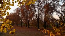 Este 22 de septiembre comienza el otoño, pero el equinoccio se vive diferente en distintas partes del mundo
