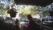 En video: una anciana roba paquetes de viviendas a plena luz del día