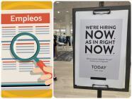 Conoce las opciones que existen para buscar empleo en California