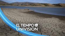 """""""Hay que tomar cartas en el asunto"""": experto pide incrementar esfuerzos en la lucha contra el cambio climático"""
