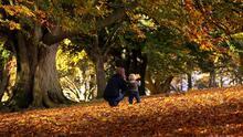 ¿Ya visitaste Galena? Estos son algunos de los mejores lugares en Illinois para vivir el otoño al máximo