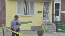 Niño de 2 años muere por los mordiscos de varios perros que estaban en su casa