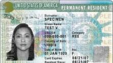Esto debes saber en caso de perder o ser víctima de robo de tu tarjeta de residencia