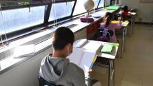 Piden una reforma de textos escolares en Nueva York para reflejar la diversidad racial que existe en las aulas