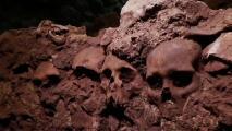En video: Descubren 119 cráneos humanos de hombres, mujeres y niños de una torre azteca en el centro de México