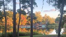 Manantiales, flores silvestres y árboles centenarios: esto ofrece el parque estatal Tyler durante el otoño