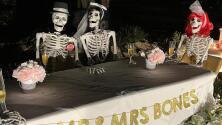 Crean curiosa historia de amor entre dos esqueletos para Halloween
