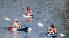 """""""Puede causar daños al cerebro"""": advierte experta sobre alga en lagos de Austin"""