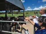 Departamento de Agricultura destina $500,000 en incentivos a agricultores afectados por la sequía