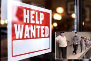 """""""Hay una laguna incomprensible"""": Cuestionan líneas en oficinas de desempleo ante gran disponibilidad de empleos"""