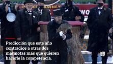La masacre que sacudió a Gage Park el Día de la Candelaria