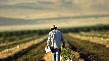 Llegó la hora de pagar la deuda histórica con nuestros trabajadores agrícolas
