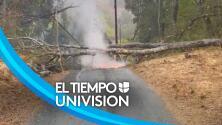 Bomberos del condado de San Mateo evitan incendio tras caída de cables de electricidad