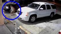 Roban camioneta y amenazan a niña que estaba dentro del vehículo, dice la policía