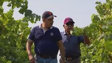 Conoce la historia del astronauta latino que se convirtió en productor de vinos