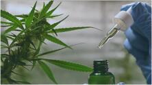 Este 1 de septiembre entra en vigor ley que expande el programa para el uso de cannabis medicinal en Texas
