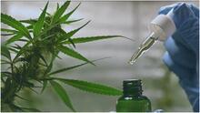 Entra en vigor ley que permite a más pacientes tener acceso a la marihuana medicinal en Texas