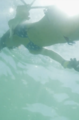 Langosta temporada/Screen Shot 2021-07-27 at 12.40.28 PM.png