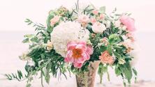 Trucos de jardinería que harán que tus plantas y flores sean duraderas y bonitas