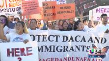 Advierten pérdidas millonarias para la economía local por cancelación DACA