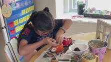 """""""Ella empezó con la idea en enero… y no ha dejado de pensar en eso"""", una niña de San Antonio vende plantitas para comprar juguetes para otros niños en Navidad"""