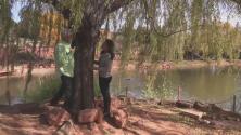 Explorando Arizona: el refugio espiritual en Sedona Mago Retreat