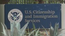 Problema en sistema de USCIS deja en el limbo trámites de inmigrantes
