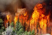 """""""No somos inmunes a un incendio forestal"""", una representante de Cal OES nos dice cómo prepararnos para un incendio"""