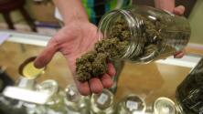 California destinará $100 millones para impulsar la comercialización legal de la marihuana