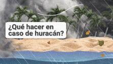 Así debes actuar en caso de huracán