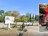 El restaurante-bar Agave de San José cerrará permanentemente tras señalamientos de prostitución, tiroteos y muertes