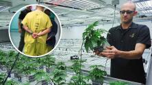 """""""La ley de inmigración es federal"""": Abogada explica que el uso de marihuana pudiera perjudicar a residentes o indocumentados"""