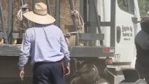 Programa proporciona ayuda a trabajadores agrícolas que han sufrido los efectos del covid-19