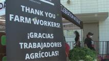Comunidad de Oxnard les celebra el Día del Padre a los trabajadores agrícolas