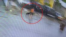 Arrestan a un hombre de Hialeah captado en video usando un cinturón para ahorcar al perro de una familia