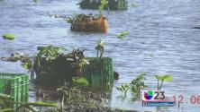 Piden ayuda por pérdidas millonarias por lluvias