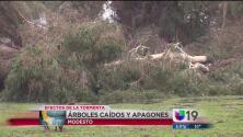 Fuertes vientos dejan daños en residencias y ranchos en Modesto