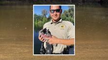 Agentes del Alguacil de Fresno salvan a gatito de ahogarse en el Río Kings