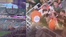 """""""El gato volador existe"""": Con la bandera estadounidense, rescatan a un gato que cayó de una de las tribunas en un juego de fútbol americano"""