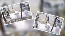 (VIDEO) Hombre espera pacientemente para que ladrones terminen de robarle y luego dispararles
