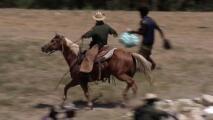 Agentes fronterizos a caballo persiguiendo inmigrantes: los videos que generaron una reacción de la Casa Blanca