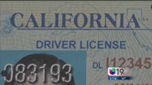 Dudas sobre la obtención de la licencia de manejo