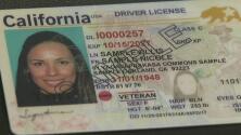 Departamento de Vehículos Motorizados empezó a expedir de la tarjeta Real ID
