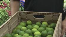 Medida arancelaria a productos mexicanos puede conducir a la pérdida de empleos e incluso a una recesión: experto